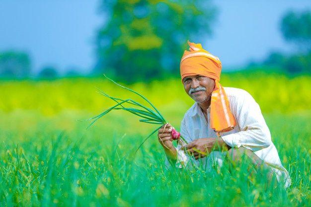 Amazon, Microsoft, Cisco swoop in on $24 billion India farm-data trove